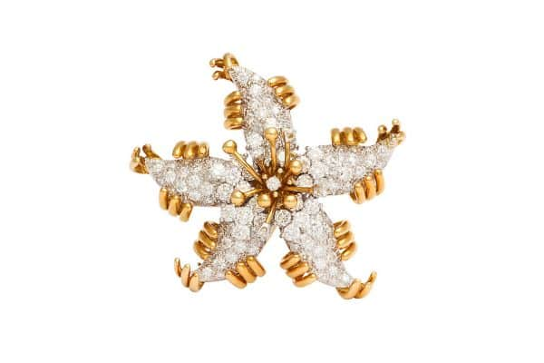 schlumberger starfish pin
